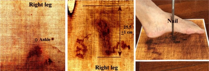 Shroud of turin radio carbon dating wrong